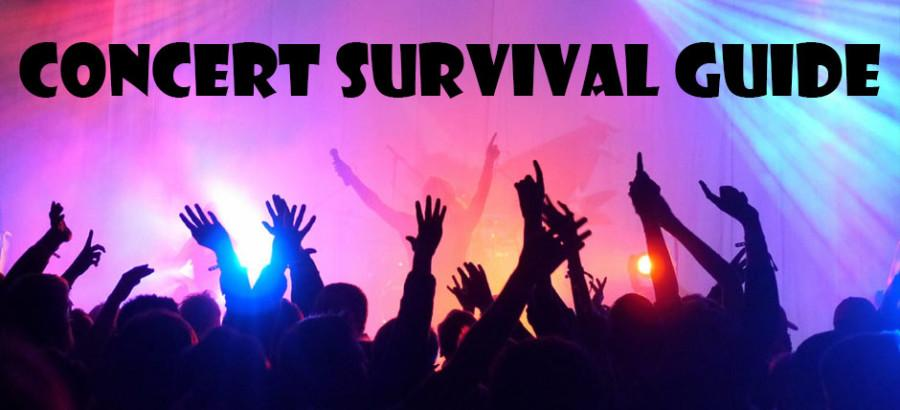 Concert+Survival+Guide