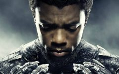 Black Panther pounces on prejudice