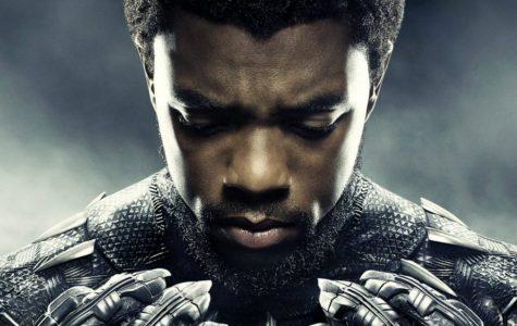 Black Panther pounces on prejudice