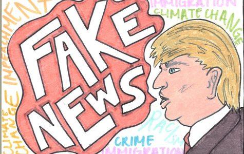 Impatient public encourages fake news