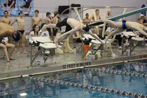 Jameson Gould, Plainfield North junior, dives in to start a free relay at the SPC  invitational meet on Feb. 8.