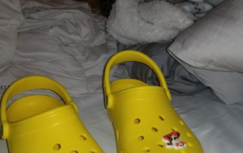 Crocs: a controversial shoe
