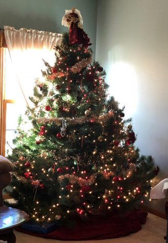 Are real or fake trees better for Christmas?