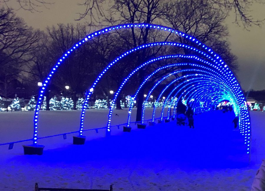 Visitors walk through a tunnel archway that changes colors to music at Brookfield Zoo.